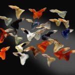 Рыбки на Садоводе