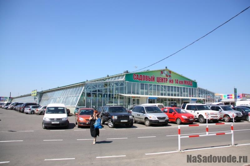 Садовый центр на Садоводе, Садовый рынок