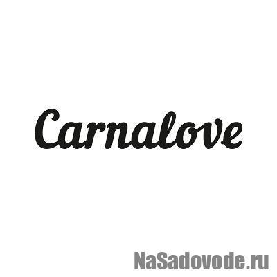Carnalove — детская одежда оптом